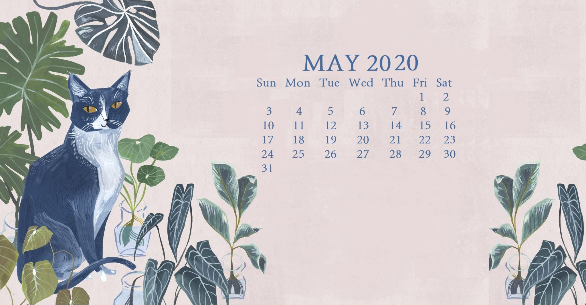 Cute May 2020 Calendar Wallpaper
