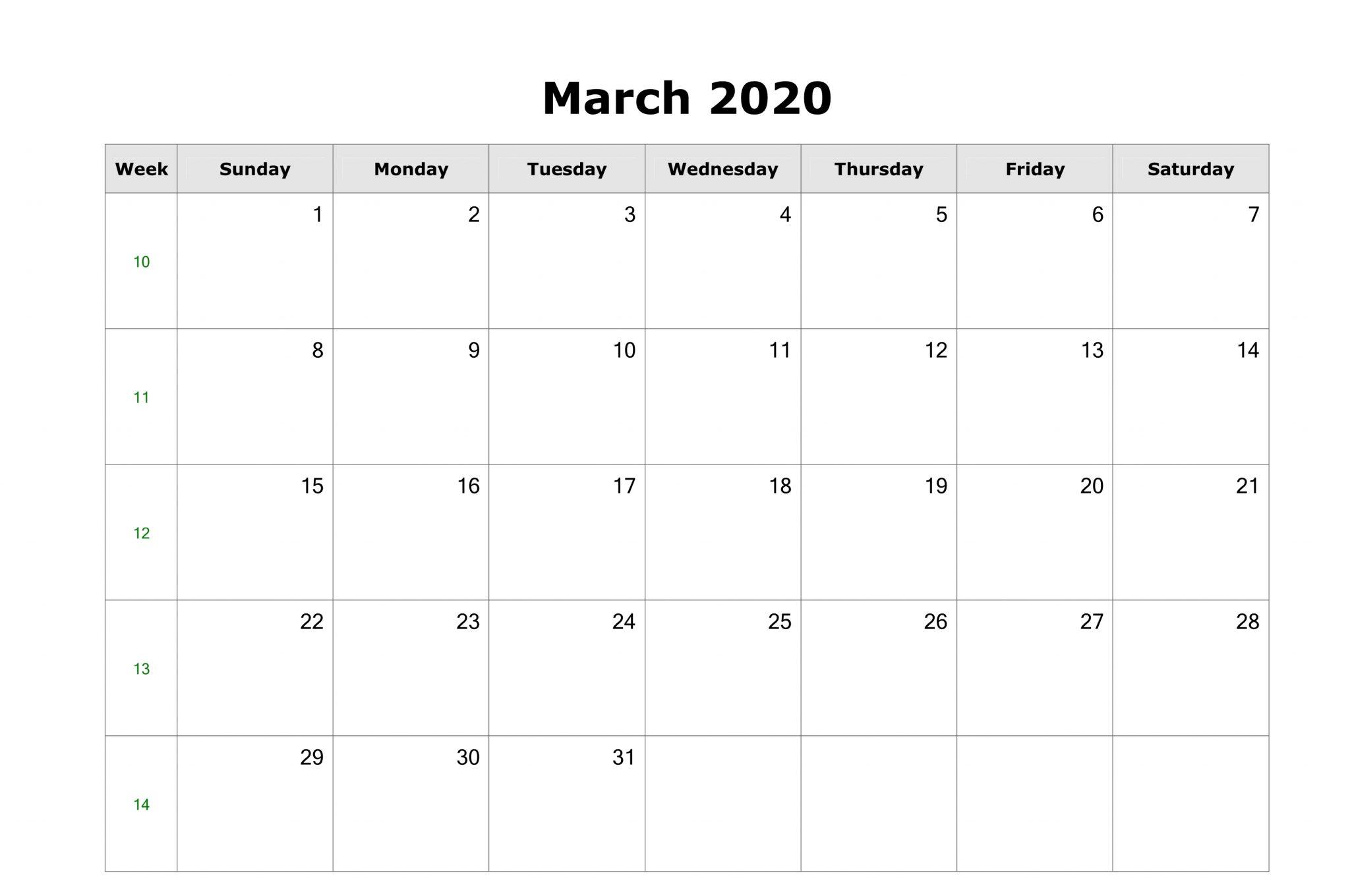 Blank March 2020 Calendar Template