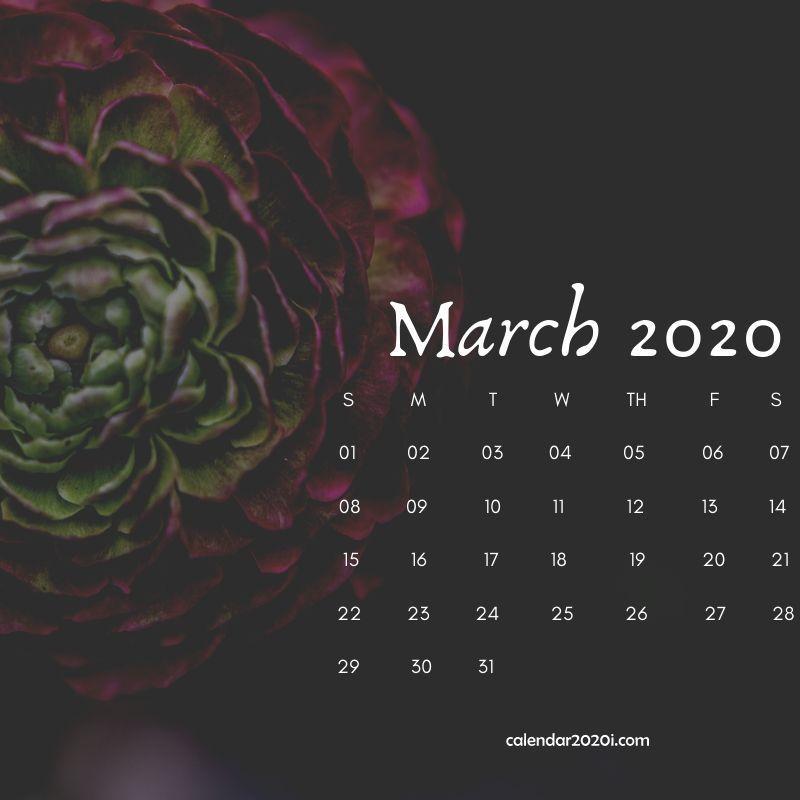 Floral March 2020 Calendar Wallpaper