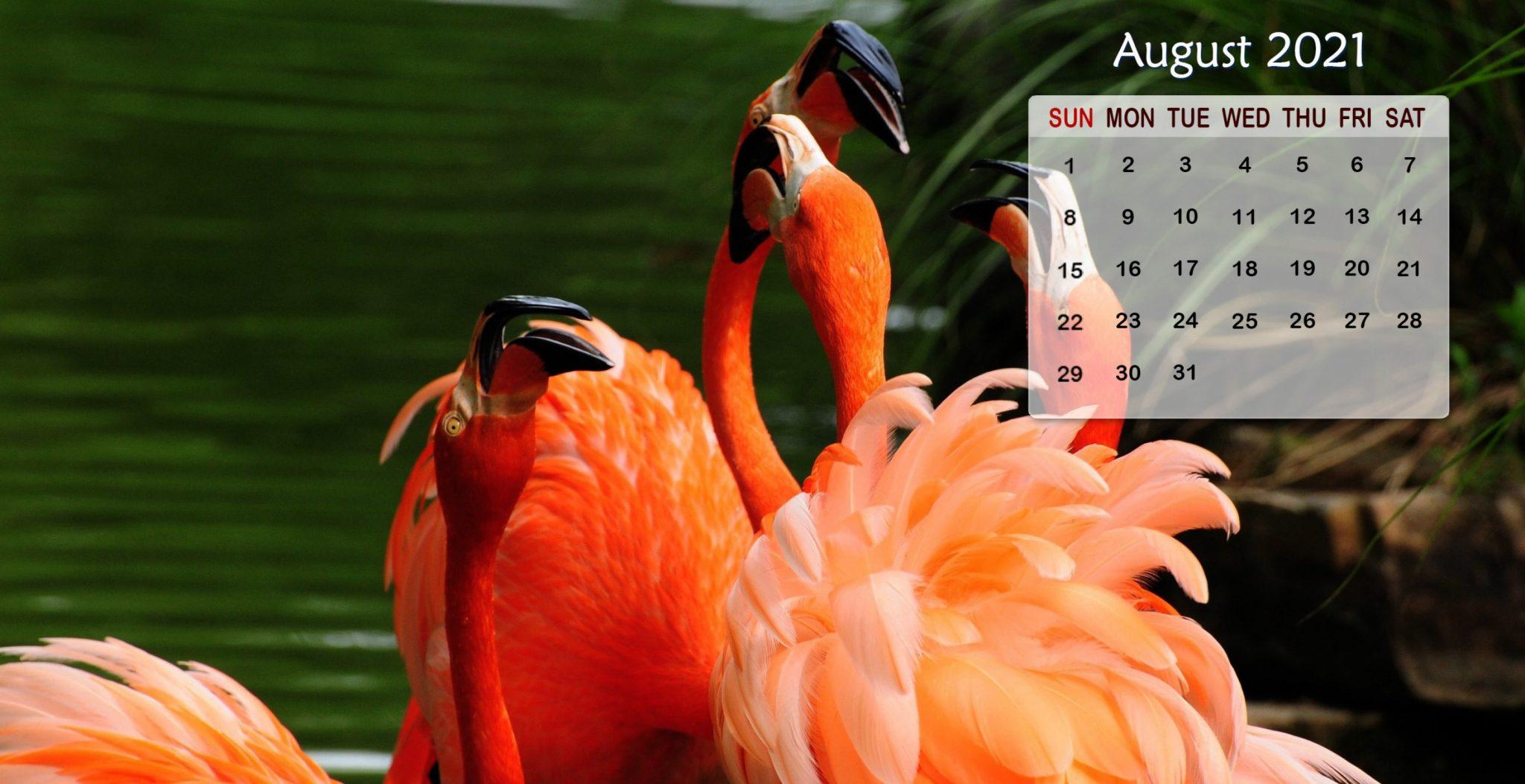 August 2021 Calendar HD Wallpaper